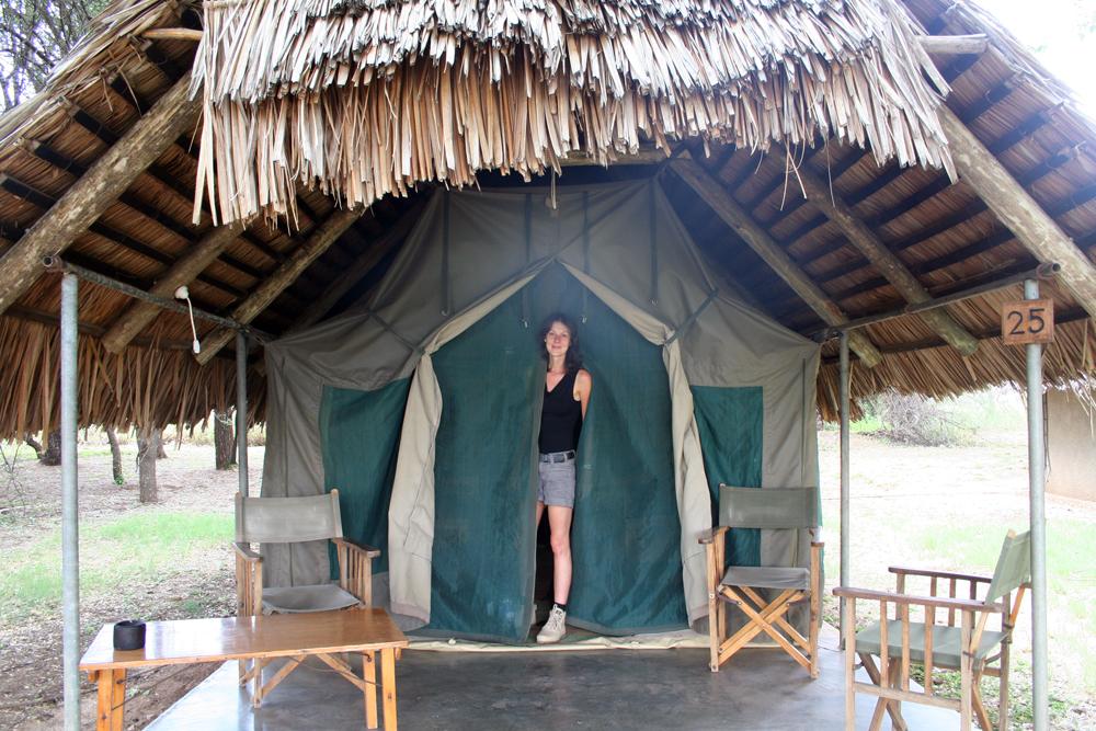 la-terre-sur-son-31-safari