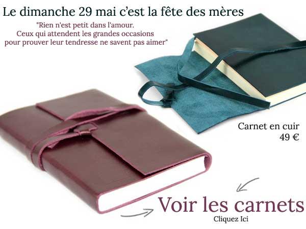 newsletter-fete-des-meres-carnet-2016